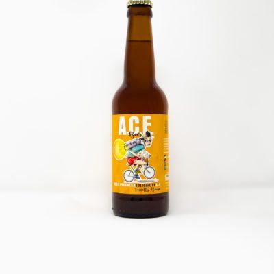 Cerveza artesana Vila-real